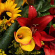 Lily bouquet in yellow and red — Stock Photo