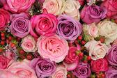 Purple and pink roses wedding arrangement — Stock Photo