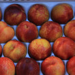 Stock Photo: Nectarines at market