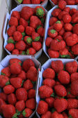 Strawberries in boxes — Stok fotoğraf