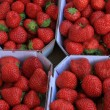 Strawberries in boxes — Stock Photo #31154827