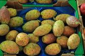 Cactus vigs på en marknad — Stockfoto
