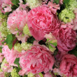 Peonies in a bridal arrangement — Stock Photo
