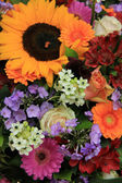 Colorful summer bouquet — Stock Photo