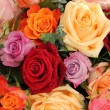 Colorful rose bouquet — Stock Photo