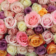 Pastel wedding roses — Stock Photo #31306139