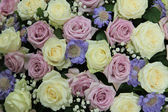 Purple and white wedding roses — Stock Photo