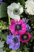 Anemones in bridal arrangement — Stock Photo