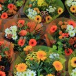 Colorful bouquets — Stock Photo