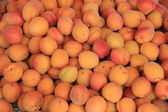 Abricots at a market — Stock Photo