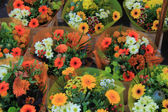 Colorful bouquets — Foto Stock