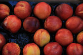 Nectarines at a market — Stock Photo