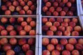 Nectarines at a market — Stock Photo