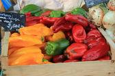 Pimentas em um mercado — Foto Stock
