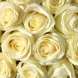 Group of white roses in floral wedding decorations — Lizenzfreies Foto