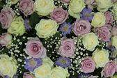 Purple and white wedding roses — Stock Photo