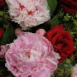 Stock Photo: Peonies and roses in a bridal bouquet