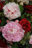 Peonies and roses in a bridal bouquet — Stock Photo