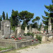 Old cemetery in the Provence — Stock Photo #33380317