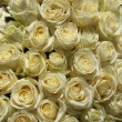 Group of white roses in floral wedding decorations — Stok fotoğraf