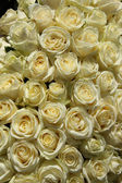 Group of white roses in floral wedding decorations — Stock Photo