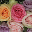 Pastel roses in bridal arrangement — Stock Photo #35553421