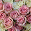 Pink and white roses in a bridal arrangement — Photo