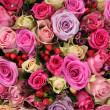 Bridal rose arrangement in various shades of pink — Photo