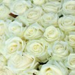 Group of white roses, wedding decorations — Stock Photo #35990055