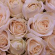 Pale pink wedding flowers — Stock Photo