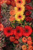 Autumn flower arrangement — Stock Photo