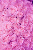 Blass rosa hochzeitsblumen — Stockfoto