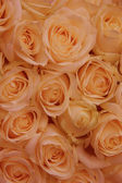 Orange rose bridal arrangement — Stock Photo