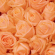 Orange rose bridal arrangement — 图库照片