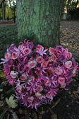 ハート同情の花 — ストック写真