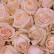 Pale pink wedding flowers — Stock Photo #37767383