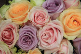 Pastel roses in bridal arrangement — Stock Photo