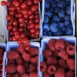 Berries in boxes — Stock Photo #38040499