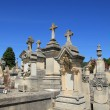 Old cemetery in Provence — Stock Photo #38040861
