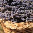 Lavender in wicker basket — Stock Photo #38040927
