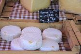 Käse auf einem Markt — Stockfoto