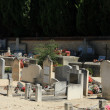 Old cemetery in Provence — Stock Photo #41514383