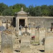 Old cemetery in Provence — Stock Photo #41514979