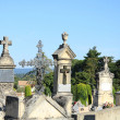 Old cemetery in Provence — Stock Photo #41515251