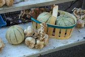 Melons and garlic — Stock Photo