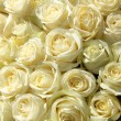 Group of white roses in floral wedding decorations — Stock Photo #41605091