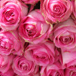 Big pink roses in wedding centerpiece — Stock Photo #41606219