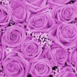 Stock Photo: Purple wedding arrangement