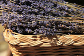 Lavender in a wicker basket — Stock Photo
