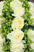 Wedding flowers: roses and green — Stock Photo